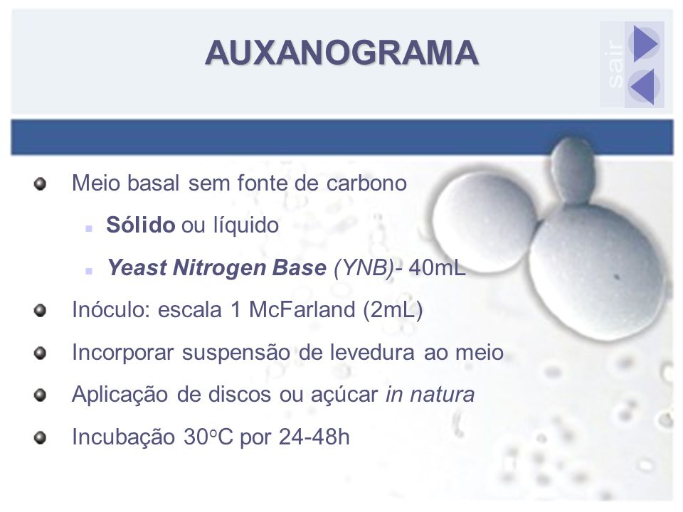 Meio basal sem fonte de carbono Sólido ou líquido Yeast Nitrogen Base (YNB)- 40mL Inóculo: escala 1 McFarland (2mL) Incorporar suspensão de levedura a