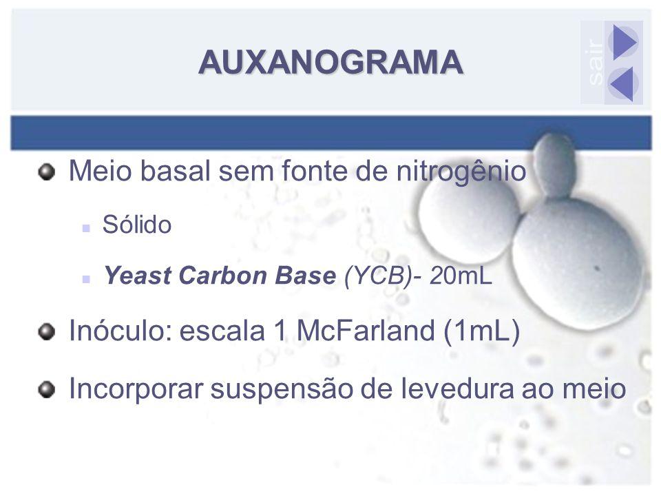 Meio basal sem fonte de nitrogênio Sólido Yeast Carbon Base (YCB)- 20mL Inóculo: escala 1 McFarland (1mL) Incorporar suspensão de levedura ao meio AUX
