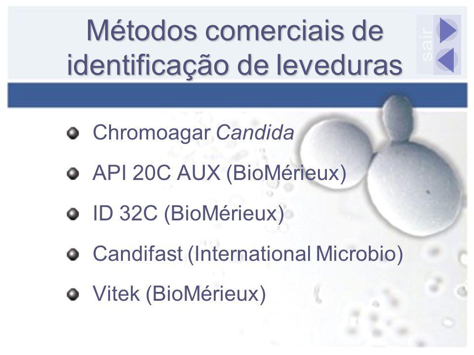 Métodos comerciais de identificação de leveduras Chromoagar Candida API 20C AUX (BioMérieux) ID 32C (BioMérieux) Candifast (International Microbio) Vi