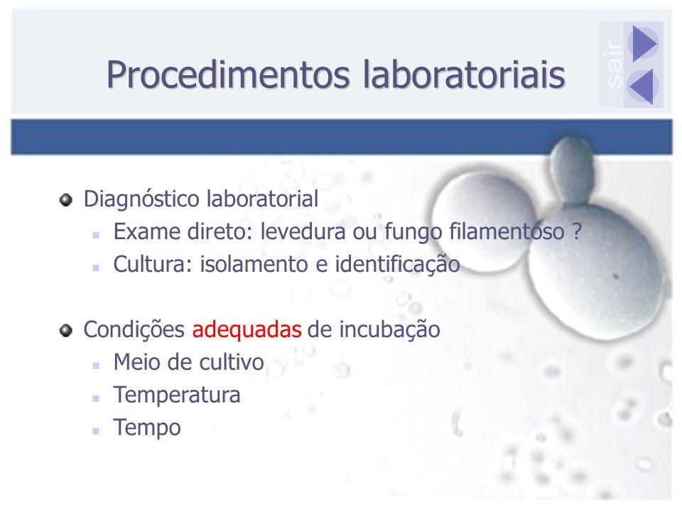 Procedimentos laboratoriais Diagnóstico laboratorial Exame direto: levedura ou fungo filamentoso ? Cultura: isolamento e identificação Condições adequ