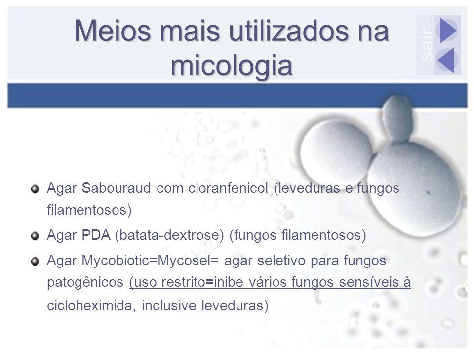 Agar Sabouraud com cloranfenicol (leveduras e fungos filamentosos) Agar PDA (batata-dextrose) (fungos filamentosos) Agar Mycobiotic=Mycosel= agar sele