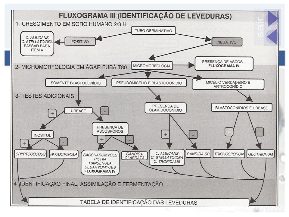 Sidrim, JJC & Rocha, MFG (1999).