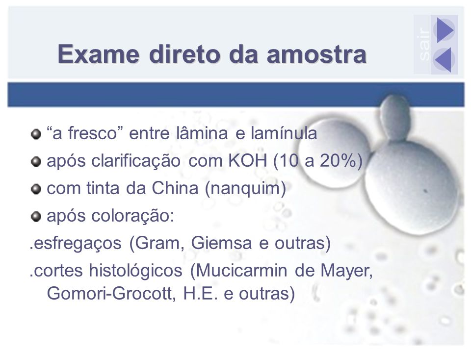 """Exame direto da amostra """"a fresco"""" entre lâmina e lamínula após clarificação com KOH (10 a 20%) com tinta da China (nanquim) após coloração:.esfregaço"""