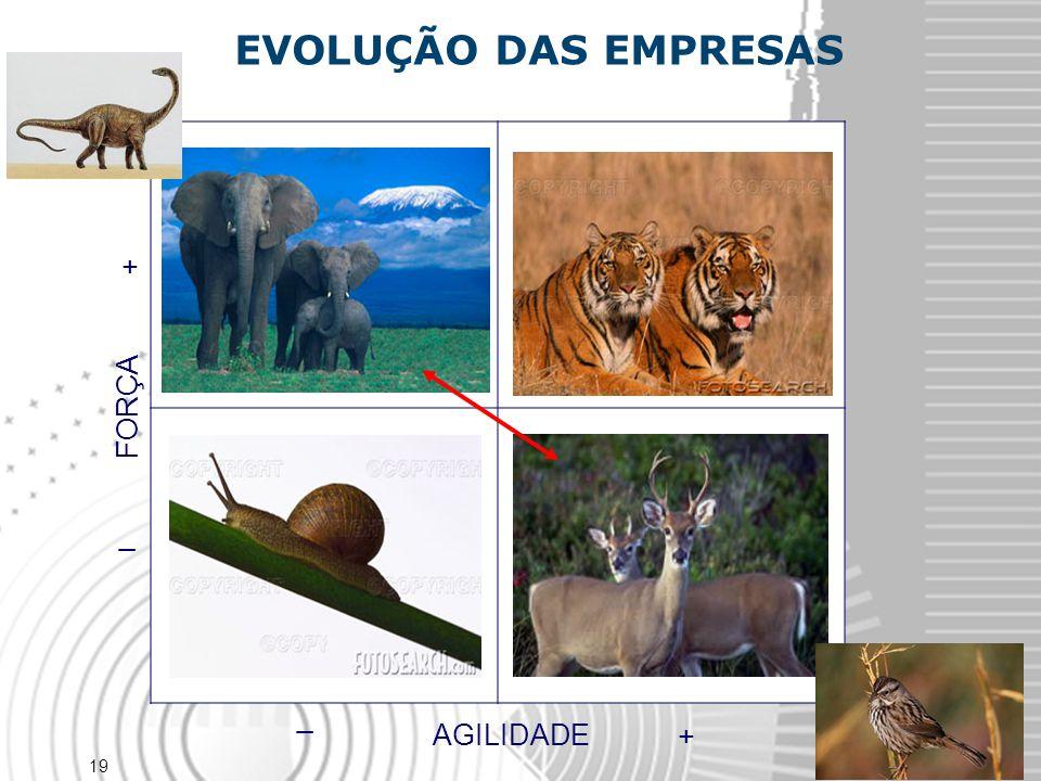 19 FORÇA _ + EVOLUÇÃO DAS EMPRESAS AGILIDADE + _