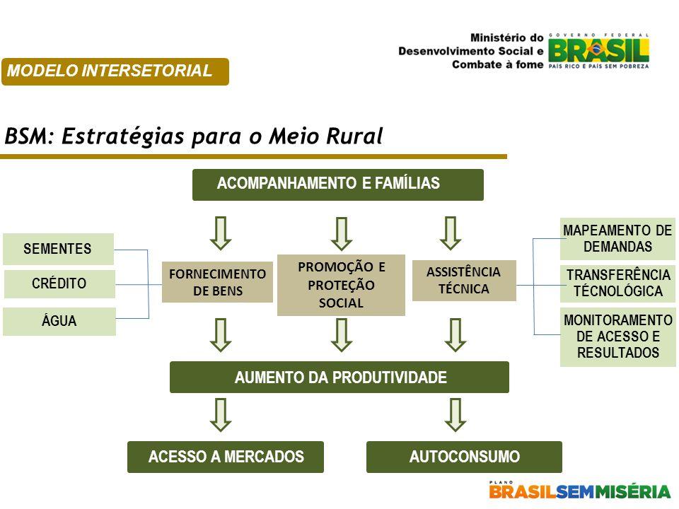 BSM: Estratégias para o Meio Rural MODELO INTERSETORIAL ACOMPANHAMENTO E FAMÍLIAS SEMENTES CRÉDITO AUMENTO DA PRODUTIVIDADE ACESSO A MERCADOSAUTOCONSU