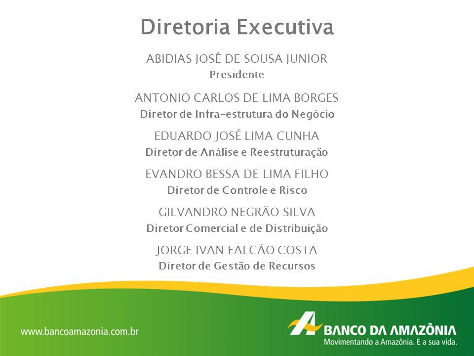 Diretoria Executiva ABIDIAS JOSÉ DE SOUSA JUNIOR Presidente ANTONIO CARLOS DE LIMA BORGES Diretor de Infra-estrutura do Negócio EDUARDO JOSÉ LIMA CUNH