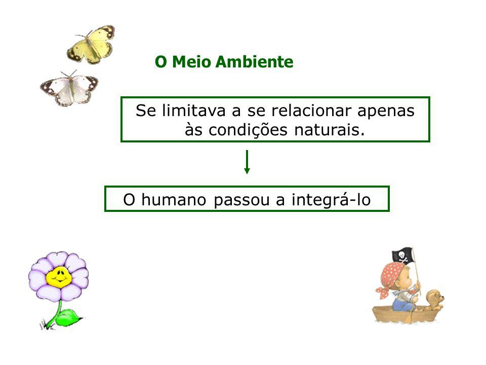 O Meio Ambiente Se limitava a se relacionar apenas às condições naturais.