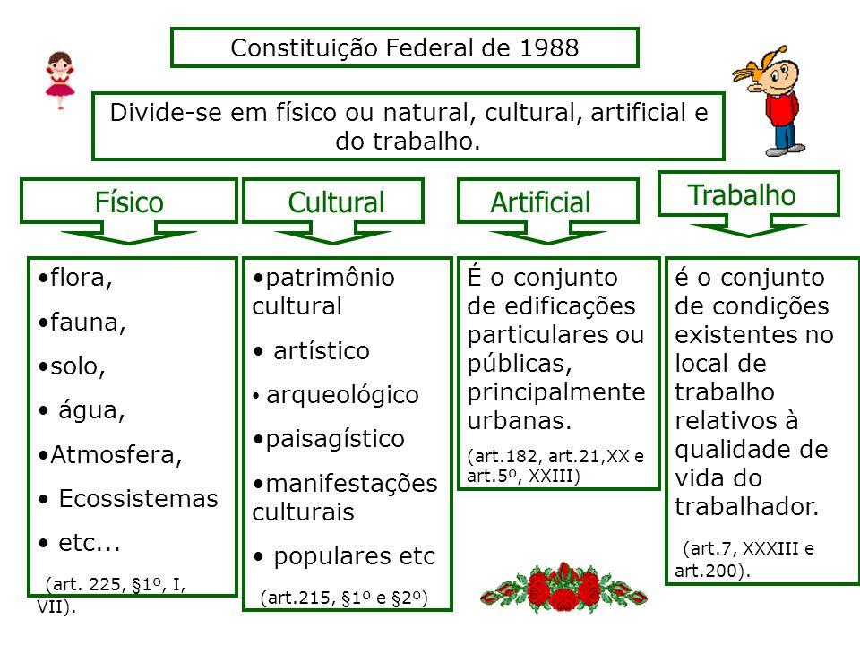 Divide-se em físico ou natural, cultural, artificial e do trabalho.