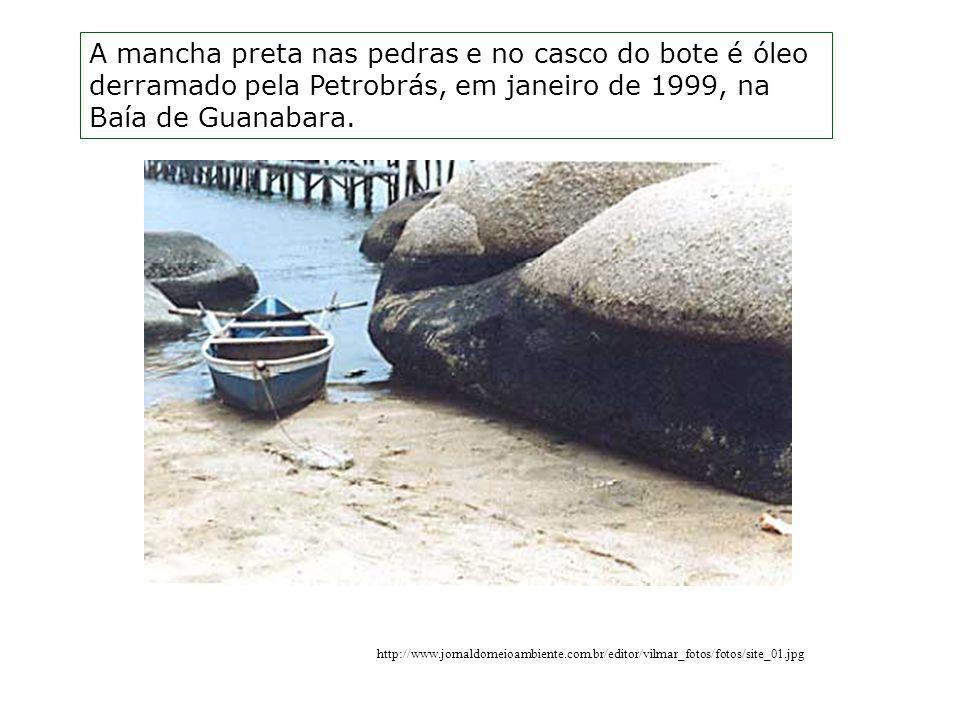 http://www.jornaldomeioambiente.com.br/editor/vilmar_fotos/fotos/site_01.jpg A mancha preta nas pedras e no casco do bote é óleo derramado pela Petrobrás, em janeiro de 1999, na Baía de Guanabara.