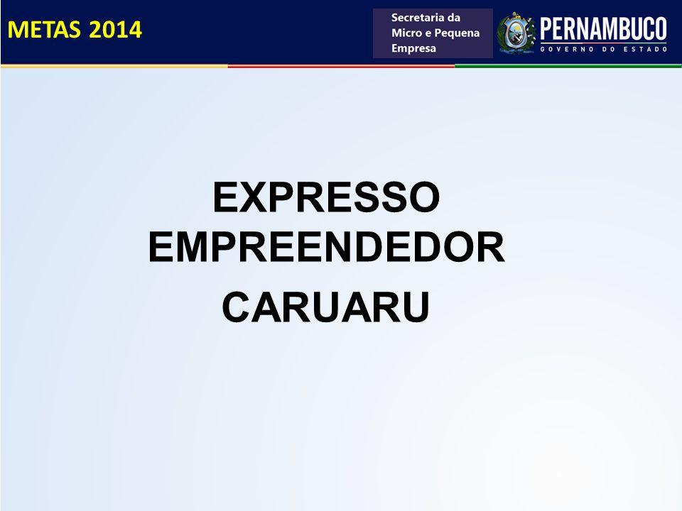 EXPRESSO EMPREENDEDOR CARUARU METAS 2014