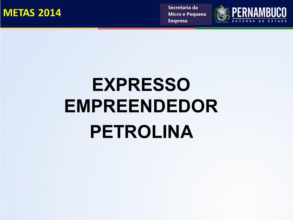 EXPRESSO EMPREENDEDOR PETROLINA METAS 2014