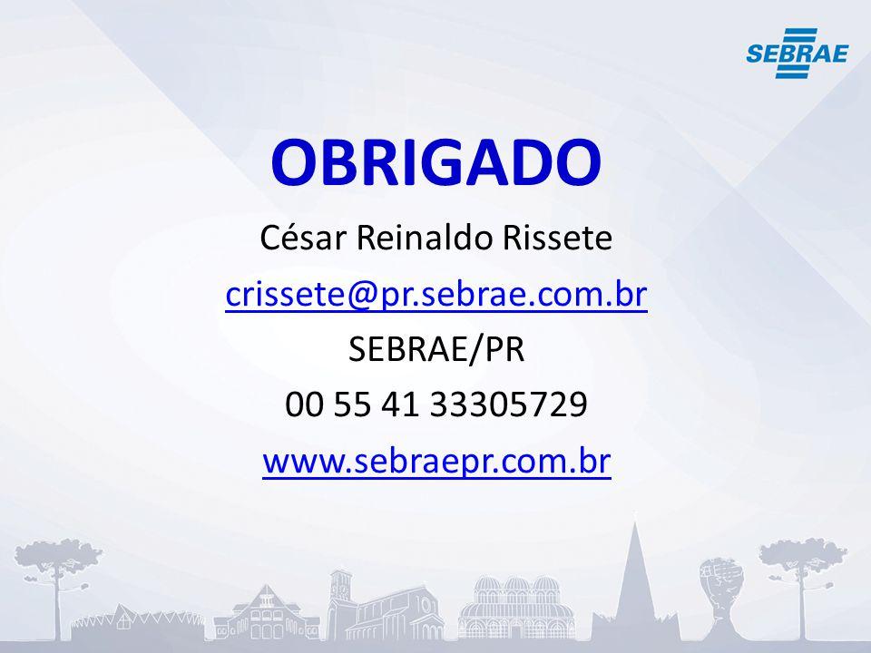 OBRIGADO César Reinaldo Rissete crissete@pr.sebrae.com.br SEBRAE/PR 00 55 41 33305729 www.sebraepr.com.br