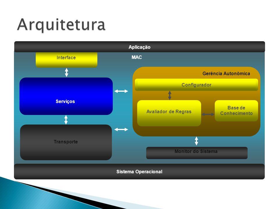  Serviços ◦ Conjunto de interceptadores que definem os serviços disponibilizados pelo middleware  Monitor do Sistema ◦ Registra as informações relacionadas aos recursos do sistema  Gerencia Autonômica ◦ É responsável por coletar e avaliar as informações coletadas, além de reconfigurar os serviços do middleware