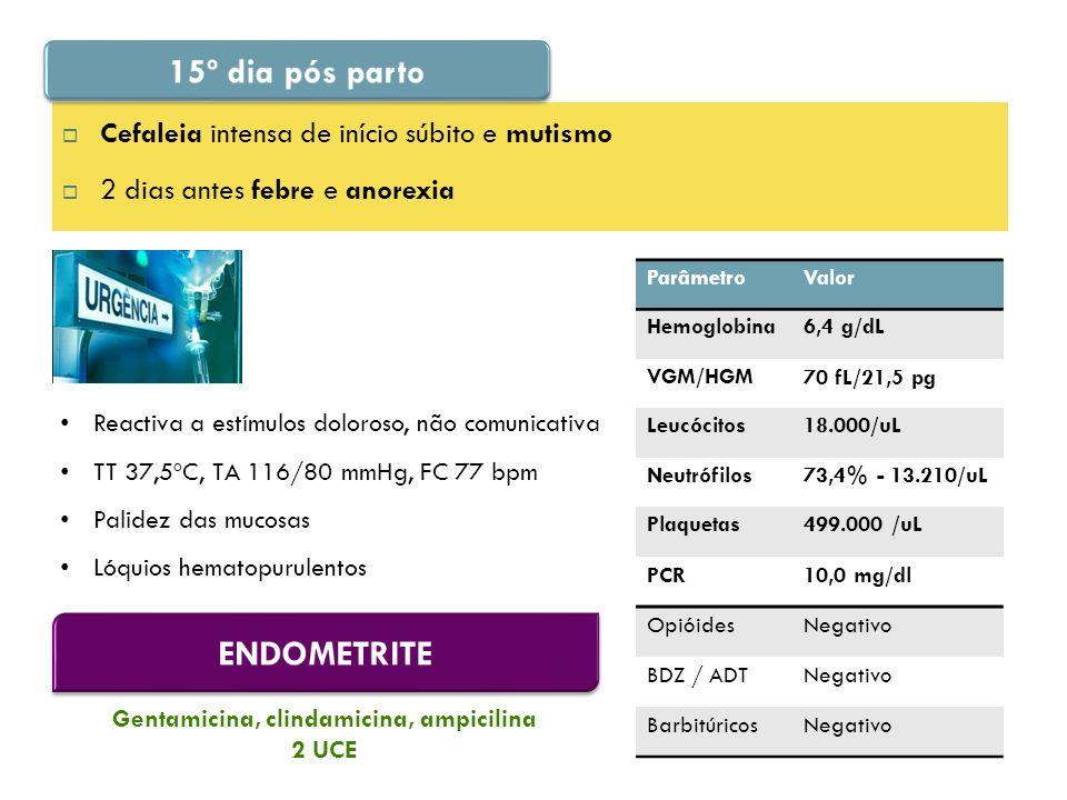  Cefaleia intensa de início súbito e mutismo  2 dias antes febre e anorexia Reactiva a estímulos doloroso, não comunicativa TT 37,5ºC, TA 116/80 mmHg, FC 77 bpm Palidez das mucosas Lóquios hematopurulentos ParâmetroValor Hemoglobina6,4 g/dL VGM/HGM70 fL/21,5 pg Leucócitos18.000/uL Neutrófilos73,4% - 13.210/uL Plaquetas499.000 /uL PCR10,0 mg/dl OpióidesNegativo BDZ / ADTNegativo BarbitúricosNegativo Gentamicina, clindamicina, ampicilina 2 UCE
