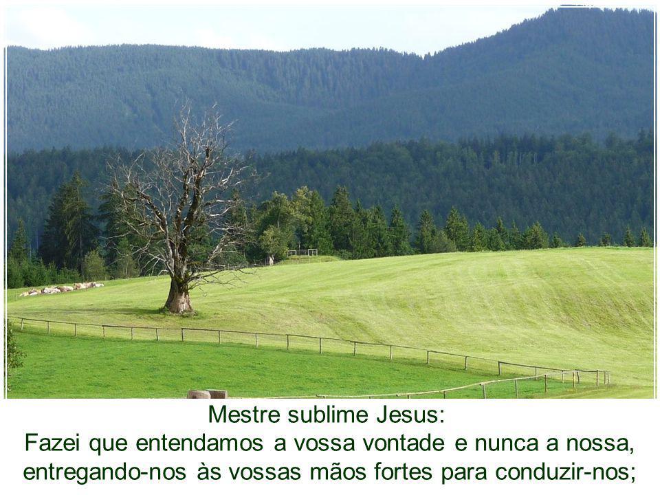 Mestre sublime Jesus: Fazei que entendamos a vossa vontade e nunca a nossa, entregando-nos às vossas mãos fortes para conduzir-nos;