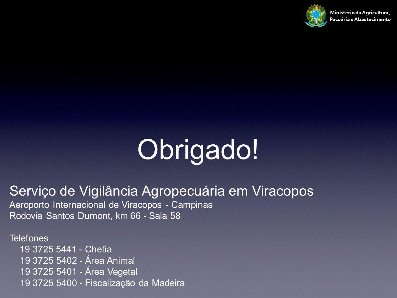 Ministério da Agricultura, Pecuária e Abastecimento Serviço de Vigilância Agropecuária em Viracopos Aeroporto Internacional de Viracopos - Campinas Ro