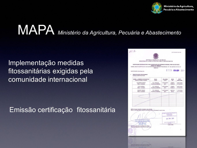 Ministério da Agricultura, Pecuária e Abastecimento MAPA Ministério da Agricultura, Pecuária e Abastecimento Implementação medidas fitossanitárias exi