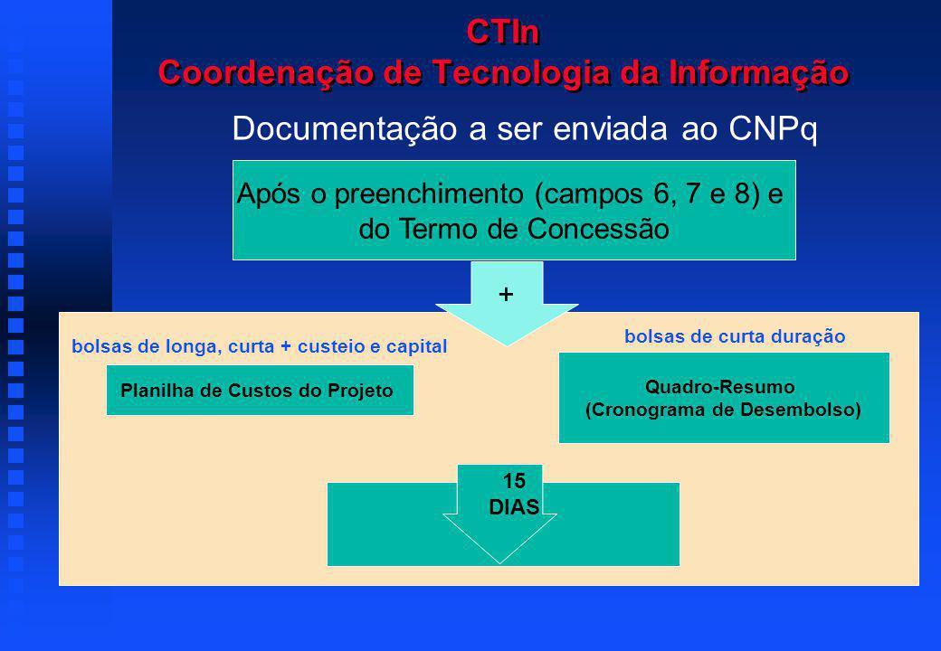 CTIn Coordenação de Tecnologia da Informação Documentação a ser enviada ao CNPq Após o preenchimento (campos 6, 7 e 8) e do Termo de Concessão 15 dias Quadro-Resumo (Cronograma de Desembolso) bolsas de curta duração Planilha de Custos do Projeto bolsas de longa, curta + custeio e capital + 15 DIAS