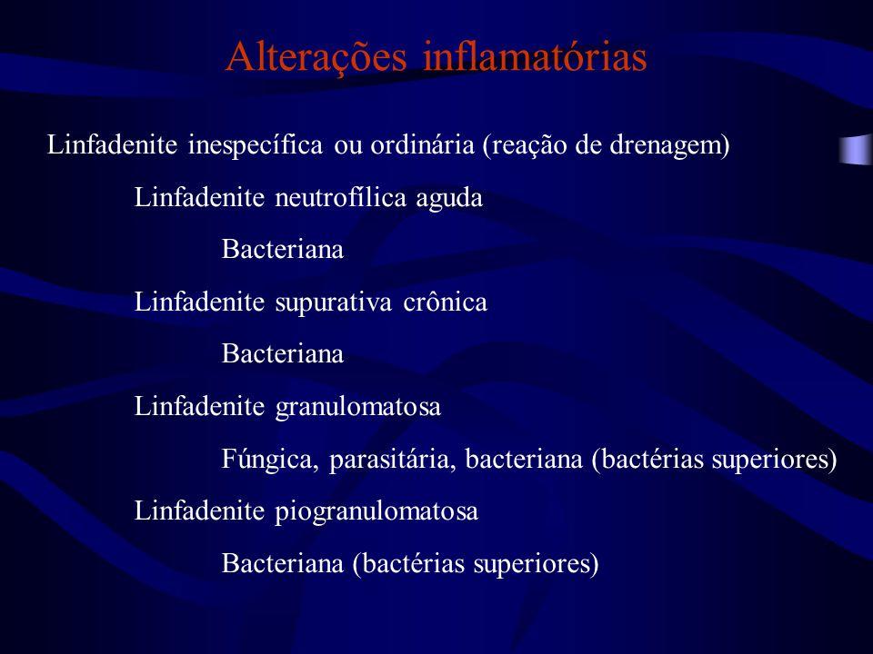Alterações inflamatórias Linfadenites específicas Micobacteriose em várias espécies animais Mycobacterium spp.