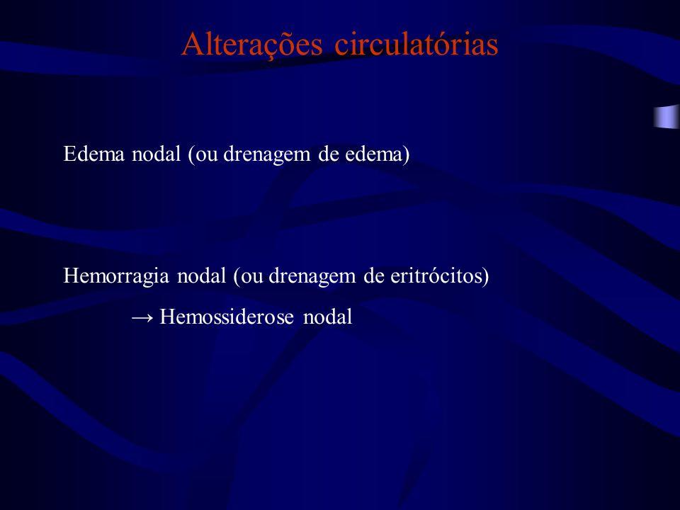 Alterações degenerativas Drenagem de pigmentos exógenos Tatuagem (tintas) Antracose (carvão) Necrose linfoide →