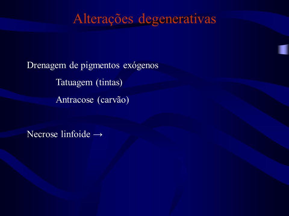 Alterações degenerativas Cães e gatos (doenças infecciosas) Cinomose (morbilivírus) Parvovirose canina (parvovírus) Panleucopenia felina (parvovírus) Hepatite infecciosa canina (adenovírus) Infecção por herpesvírus em cães (herpesvírus) Calicivirose felina (calicivírus)