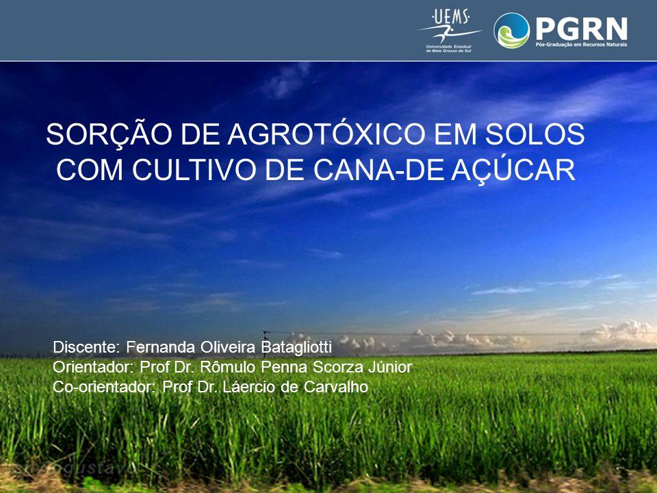 SORÇÃO DE AGROTÓXICO EM SOLOS COM CULTIVO DE CANA-DE AÇÚCAR Discente: Fernanda Oliveira Batagliotti Orientador: Prof Dr.