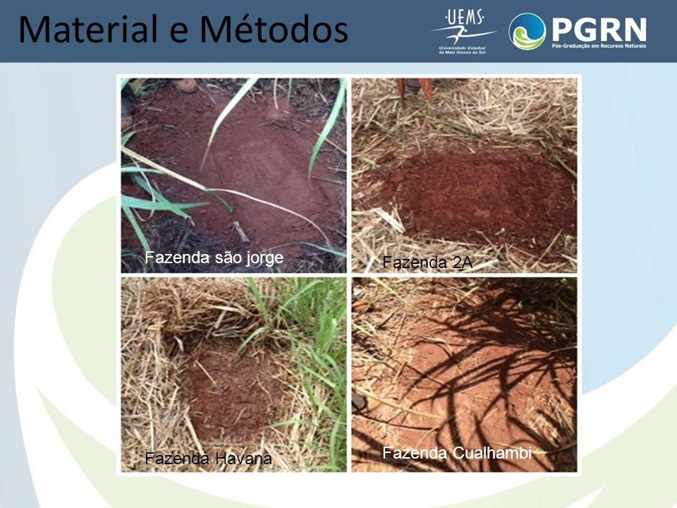 Material e Métodos Fazenda são jorge Fazenda 2A Fazenda Havana Fazenda Cualhambi