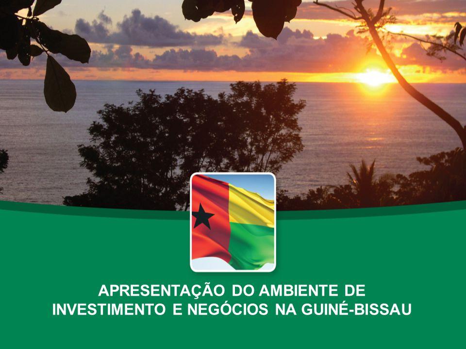 APRESENTAÇÃO DO AMBIENTE DE INVESTIMENTO E NEGÓCIOS NA GUINÉ-BISSAU