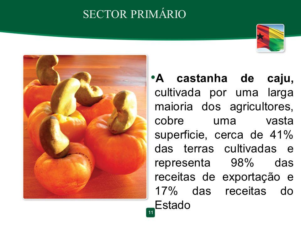 SECTOR PRIMÁRIO A castanha de caju, cultivada por uma larga maioria dos agricultores, cobre uma vasta superficie, cerca de 41% das terras cultivadas e