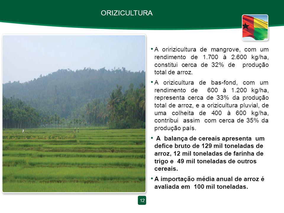 ORIZICULTURA A oririzicultura de mangrove, com um rendimento de 1.700 à 2.600 kg/ha, constitui cerca de 32% de produção total de arroz. A orizicultura