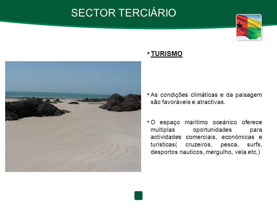 SECTOR TERCIÁRIO TURISMO As condições climáticas e da paisagem são favoráveis e atractivas. O espaço maritimo oceánico oferece multiplas oportunidades