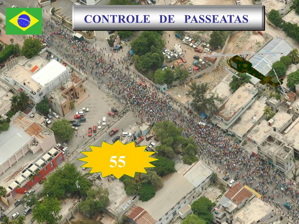 CONTROLE DE PASSEATAS 55