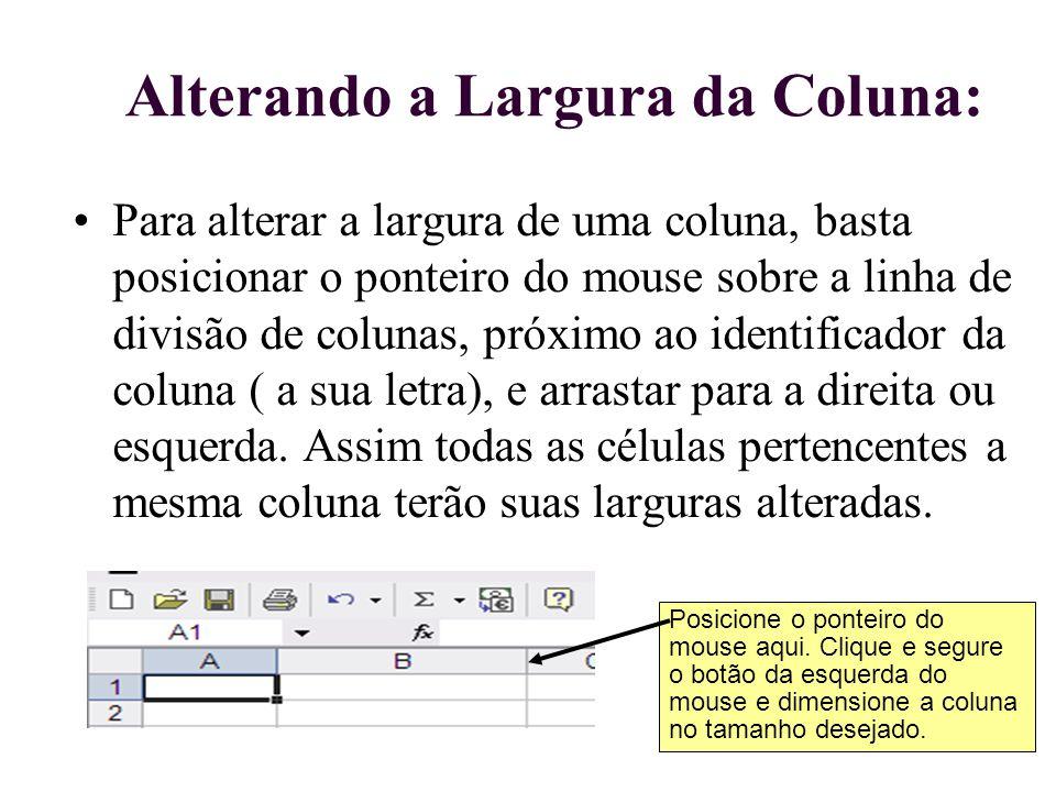 Alterando a Largura da Coluna: Para alterar a largura de uma coluna, basta posicionar o ponteiro do mouse sobre a linha de divisão de colunas, próximo