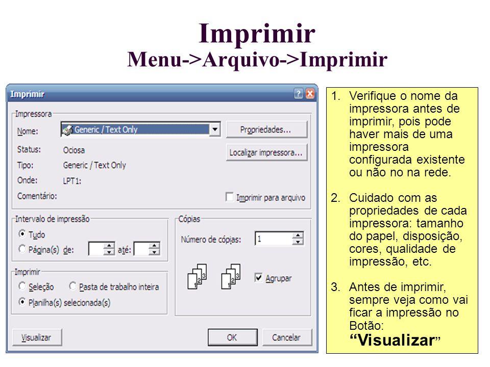 Imprimir Menu->Arquivo->Imprimir 1.Verifique o nome da impressora antes de imprimir, pois pode haver mais de uma impressora configurada existente ou n
