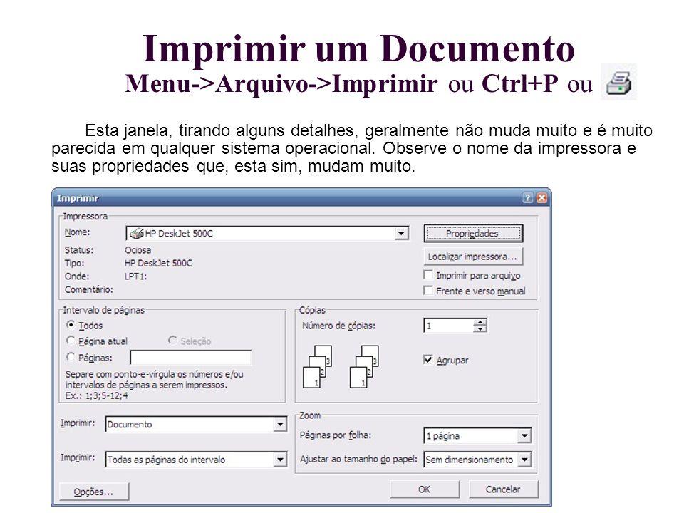 Imprimir um Documento Menu->Arquivo->Imprimir ou Ctrl+P ou Esta janela, tirando alguns detalhes, geralmente não muda muito e é muito parecida em qualq