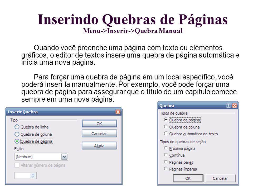 Inserindo Quebras de Páginas Menu->Inserir->Quebra Manual Quando você preenche uma página com texto ou elementos gráficos, o editor de textos insere u