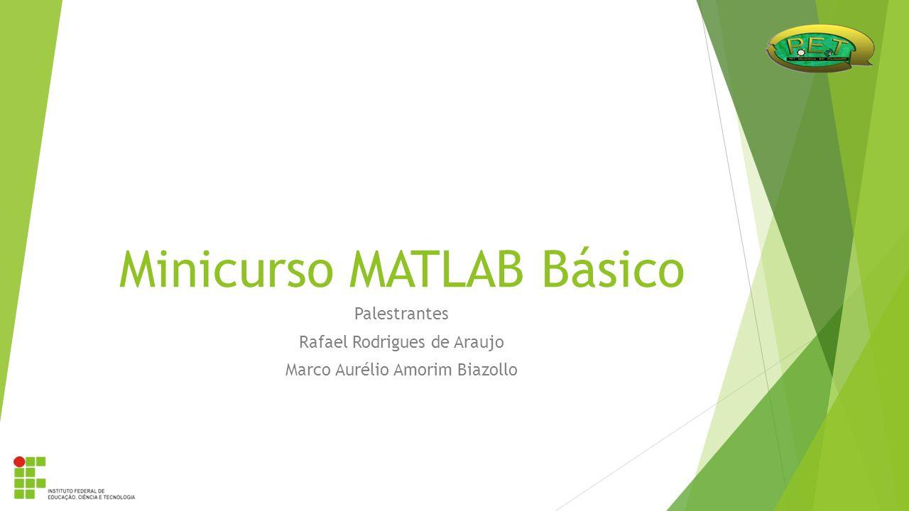Minicurso MATLAB Básico Palestrantes Rafael Rodrigues de Araujo Marco Aurélio Amorim Biazollo