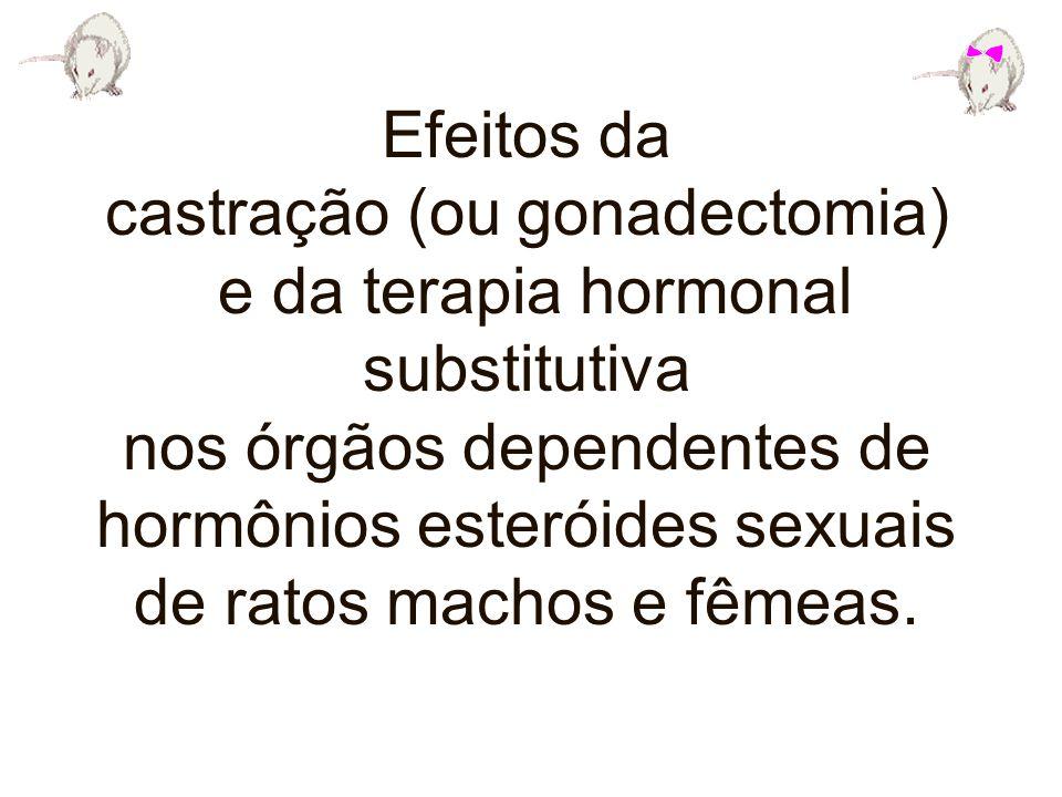 Efeitos da castração (ou gonadectomia) e da terapia hormonal substitutiva nos órgãos dependentes de hormônios esteróides sexuais de ratos machos e fêm