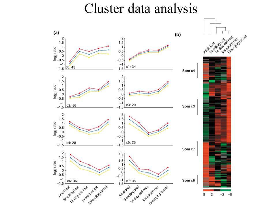 Cluster data analysis