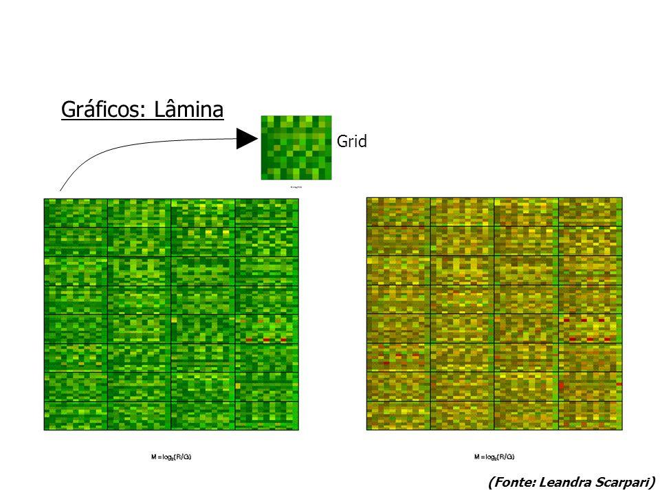 Gráficos: Lâmina (Fonte: Leandra Scarpari) Grid