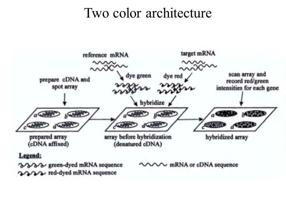 Two color architecture