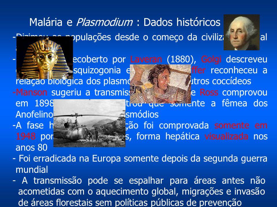 """-Dizimou as populações desde o começo da civilização (""""Mal ar"""") -Parasita foi decoberto por Laveran (1880), Golgi descreveu em 1885 a esquizogonia eri"""