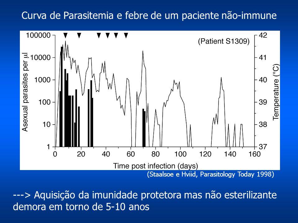 Curva de Parasitemia e febre de um paciente não-immune ---> Aquisição da imunidade protetora mas não esterilizante demora em torno de 5-10 anos (Staal