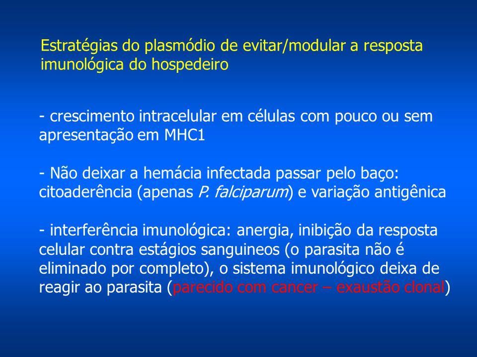 - crescimento intracelular em células com pouco ou sem apresentação em MHC1 - Não deixar a hemácia infectada passar pelo baço: citoaderência (apenas P