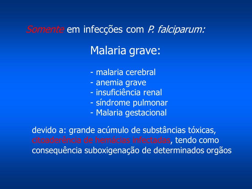 Somente em infecções com P. falciparum: devido a: grande acúmulo de substâncias tóxicas, citoaderência de hemácias infectadas, tendo como consequência
