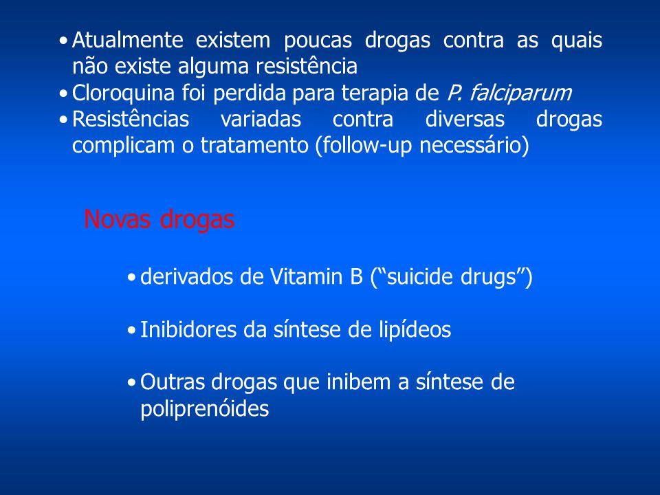 Novas drogas derivados de Vitamin B ( suicide drugs ) Inibidores da síntese de lipídeos Outras drogas que inibem a síntese de poliprenóides Atualmente existem poucas drogas contra as quais não existe alguma resistência Cloroquina foi perdida para terapia de P.