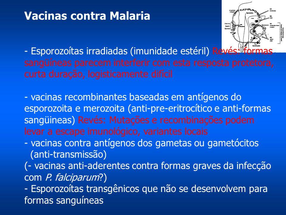 Vacinas contra Malaria - Esporozoítas irradiadas (imunidade estéril) Revés: formas sangüíneas parecem interferir com esta resposta protetora, curta duração, logisticamente difícil - vacinas recombinantes baseadas em antígenos do esporozoita e merozoita (anti-pre-eritrocítico e anti-formas sangüineas) Revés: Mutações e recombinações podem levar a escape imunológico, variantes locais - vacinas contra antígenos dos gametas ou gametócitos (anti-transmissão) (- vacinas anti-aderentes contra formas graves da infecção com P.