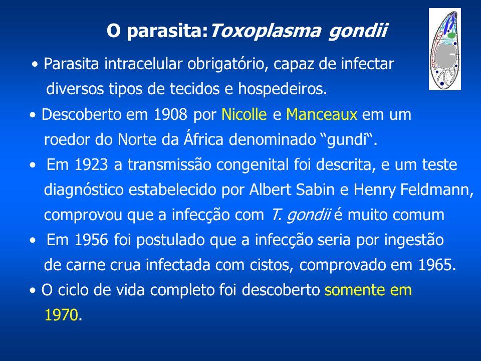 O parasita:Toxoplasma gondii Parasita intracelular obrigatório, capaz de infectar diversos tipos de tecidos e hospedeiros. Descoberto em 1908 por Nico