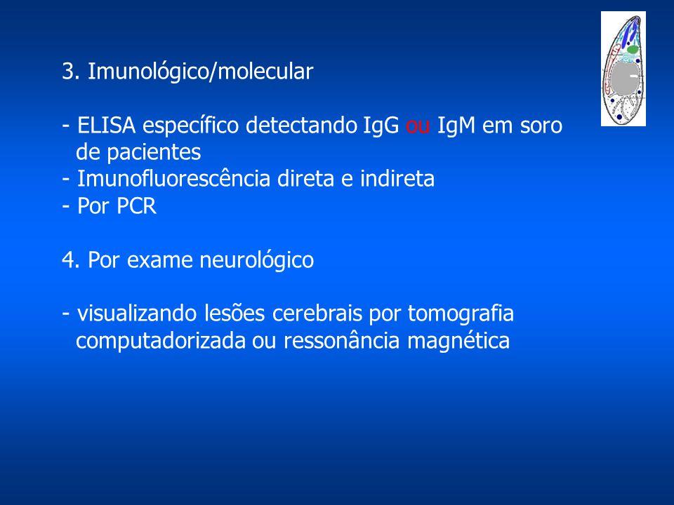 3. Imunológico/molecular - ELISA específico detectando IgG ou IgM em soro de pacientes - Imunofluorescência direta e indireta - Por PCR 4. Por exame n