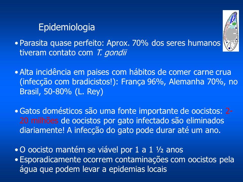 Epidemiologia Parasita quase perfeito: Aprox. 70% dos seres humanos tiveram contato com T. gondii Alta incidência em paises com hábitos de comer carne